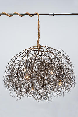 Same Tree - Native Chandelier
