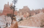 Back from Vacation to Another New Year - Andrew at Bryce Canyon