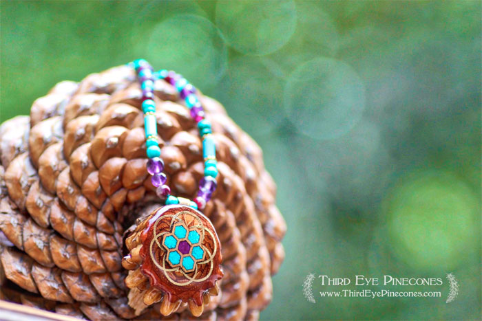 Third Eye Pinecones